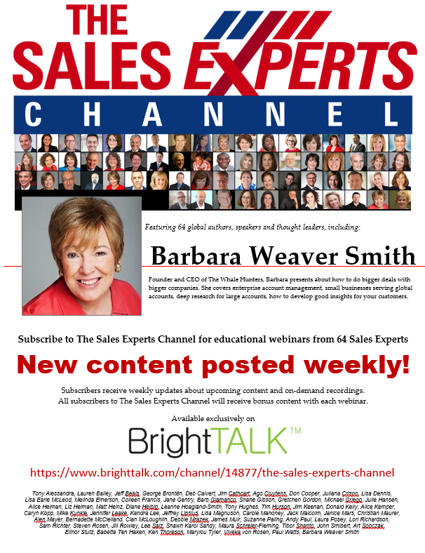 SalesExperts.bws_ New in 2017: The Sales Experts Channel