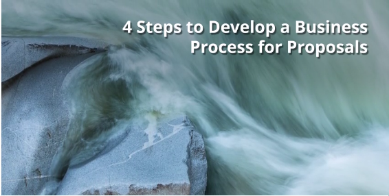 Process for Proposals